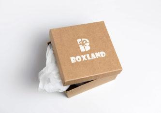 BoxLand (Подарочные коробки)
